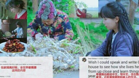 外国网友看李子柒最新视频酸的一生评论 reaction