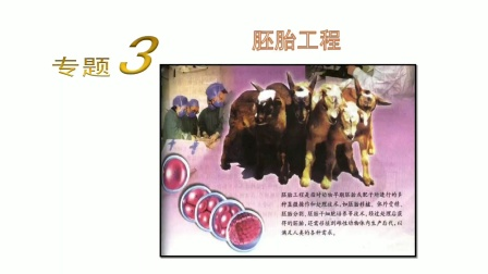 高中生物选修三专题3.1(1)