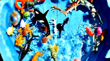 学习认知陆地与海洋野生动物园动物 亲子益智