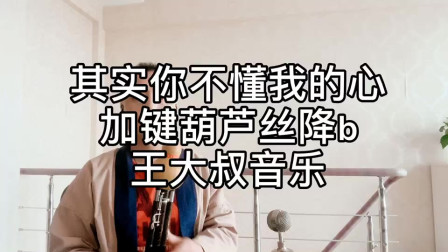 《其实你不懂我的心》葫芦丝降B调演奏 非常经典的老歌 很好听