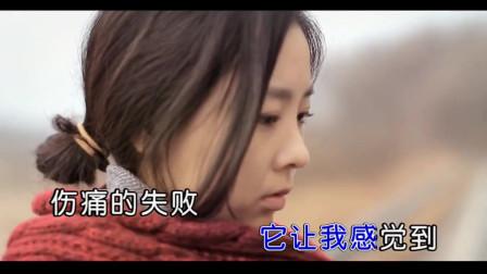 留不住你的爱KTV-雨中百合 -董氏专业下载推荐