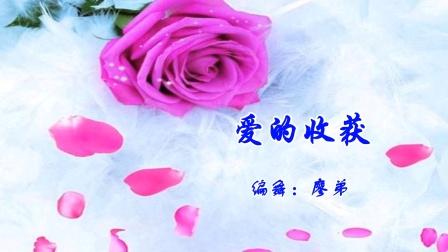 潇洒慧涵★《爱的收获》编舞:廖弟老师