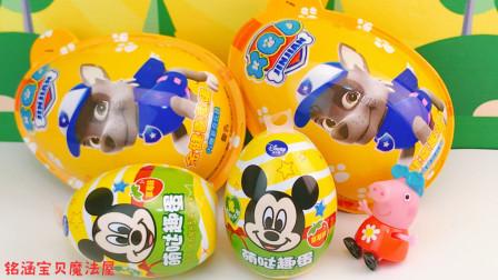 小猪佩奇分享米奇汪汪队奇趣蛋玩具蛋