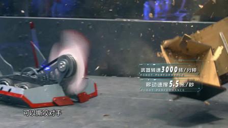 澳大利亚小伙年少有为,13岁就开始造机器人,来看看他的武器