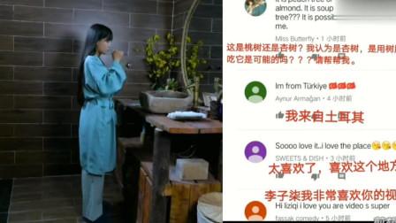 老外在中国:外国人围观李子柒摘桃胶,网友评论:从树上摘下的水晶味道如何
