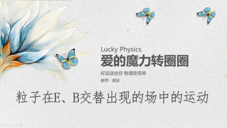 高考物理大题解析 粒子在EB场中的运动