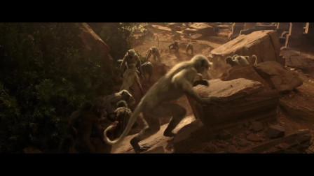 看看猴子怎么欺骗人类
