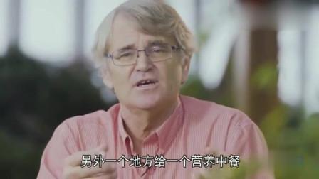 老外在中国:外国教授:中国决定做的计划,很快就能做好!