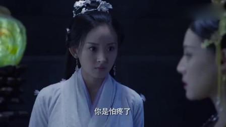 杜纤音是璇玑的女儿,难怪璇玑要对风如澈下狠手