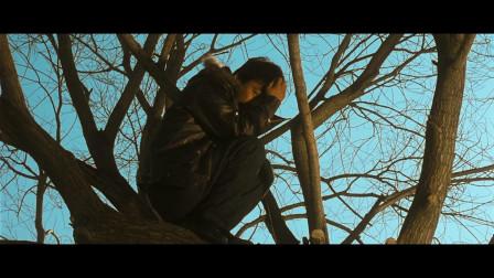 不懂就要问,《Hello! 树先生》后半段是现实,还是树先生的梦境?