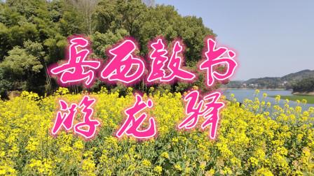刘纯松岳西鼓书《游龙驿》第七集