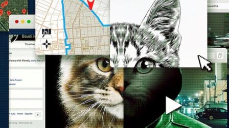 全网通缉虐猫到杀人变态,这是互联网人肉搜索的胜利