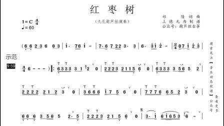 流行歌曲《红枣树》葫芦丝动态示范,吹的真好听!