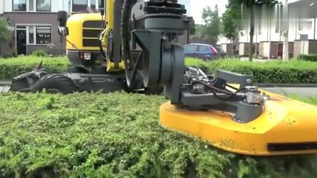 看人家德国人的绿植修剪机械,太省人工了,真想要一台!