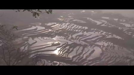 云南梯田古城红河谷游记