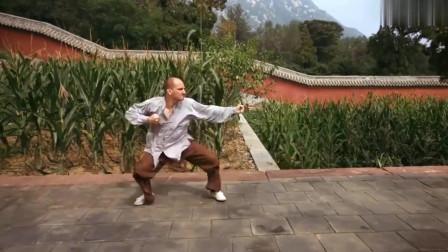 老外地道的通臂拳,差点误认为是中国人