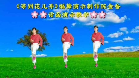 C陈金香广场舞《等到花儿开》原创动感时尚三十二步附教学