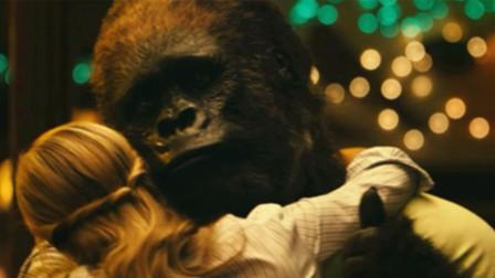 饲养员为让大猩猩开心,竟找美女陪它跳舞!网友:活得不如个猩猩