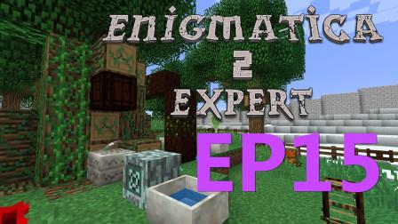 我的世界:智瞎房屋我的骄傲  我的世界Enigmatica2探险P15【某咪sa】
