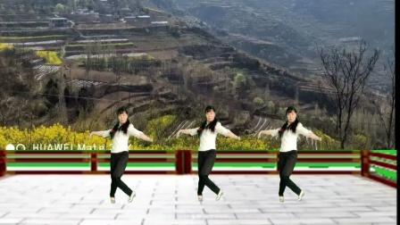 陈金香广场舞《回到山沟沟》原创我为劳动人民跳支舞教学版