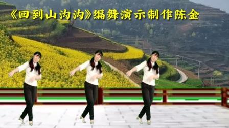 陈金香广场舞《回到山沟沟》演农民演得到位吗