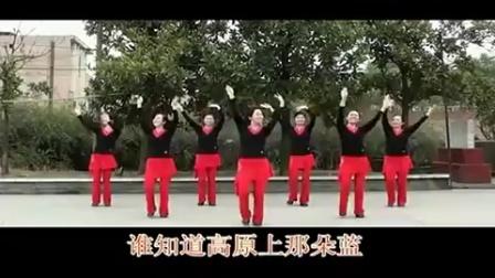 广场舞《高原蓝》附教学