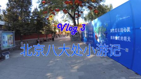 【海洋的云游园Vlog】北京八大处小游记