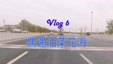 【海洋的云骑行Vlog】北京大兴礼贤油菜花海