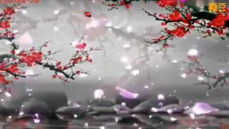 蝶韵芙蓉影视素材