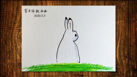 小兔窦老师教画画