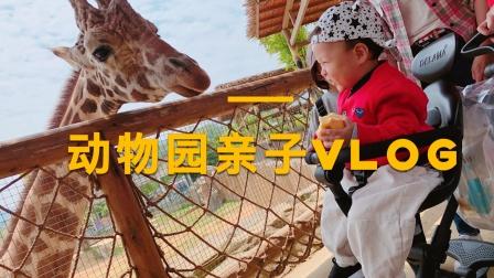 杭州野生动物园全家一日游.mp4