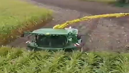 这个大机器就是厉害,扫过的地方庄稼就收割完成了