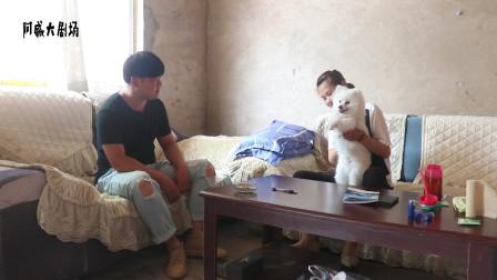 奥迪把宠物狗送给闪闪,闪闪高兴的像孩子,奥迪为啥发愁起来?