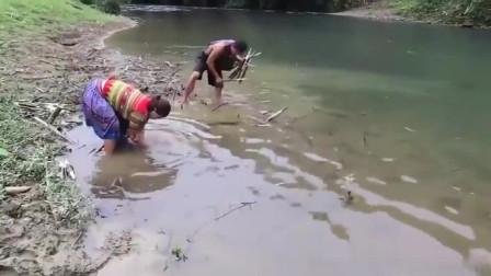 农村夫妻把树木削尖,放进河里设机关,一觉醒来扎到好几条大鱼