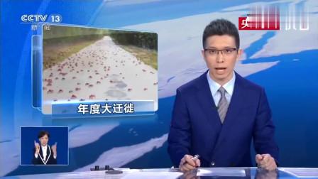 朱广权播着新闻即兴说起了Rap 心疼手语老师!
