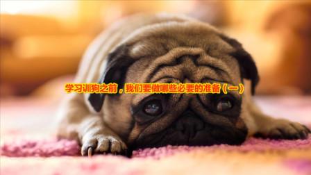 学习训狗之前,我们要做哪些必要的准备(一)