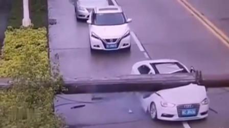 广东珠海:奥迪车行驶中天降横祸!司机死里逃生,监控拍下全过程