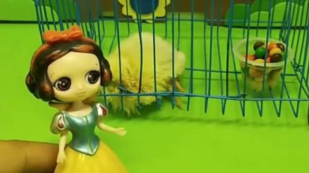 王子给白雪送了一只小鸡,贝尔真是太生气了,她要把小鸡偷回家