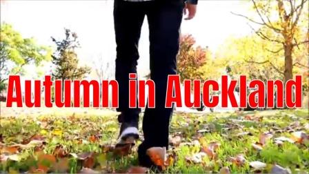 新西兰的秋天美景