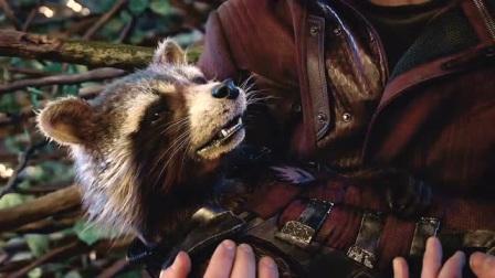 也许真正能听懂格鲁特话的人,只有火箭浣熊一个人吧