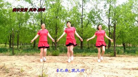 大荔凤玲广场舞《等到花儿开》原创含教学