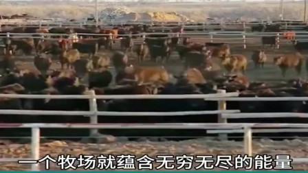 牛人发明:美国牛人发明牛屁背包,这是发现新能源了吗?这会不会把自己炸飞了?