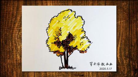 画树1窦老师教画画