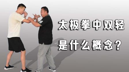 太极拳迈步如猫行?如何理解武术中双轻,内家拳虚实结合