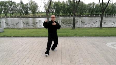 传统杨氏二十九式太极拳