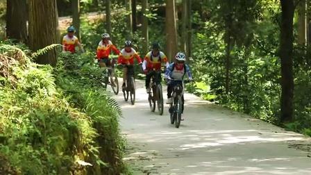 黎平国家森林公园