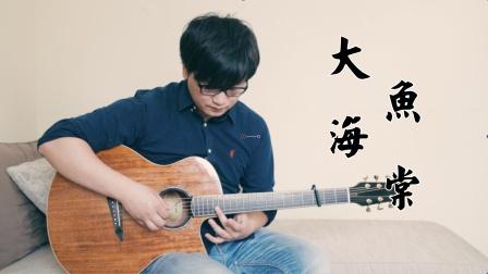 【指弹吉他】慎点!听完之后可能会哭 大鱼海棠 印象曲《大鱼》飞鸟2A吉他演奏