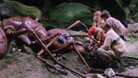 熊孩子意外变小,于是门口花园成了热带雨林,连蚂蚁都大的可怕!