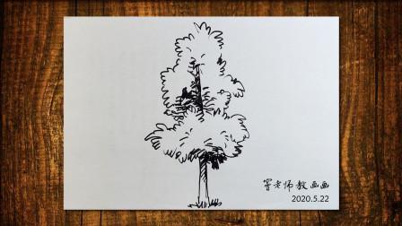 画树4窦老师教画画