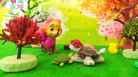 小海龟上岸遇到小黄鸭、糖宝、汪汪队天天